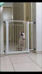 Título do anúncio: Grade de proteção de cães nova