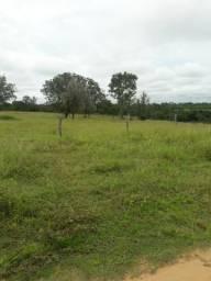 Chácara Divinópolis do Tocantins 5.2 alqueires