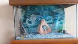 Aquario com movel acoplado