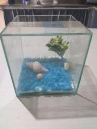Aquário de vidro temperado ( Castanhal)