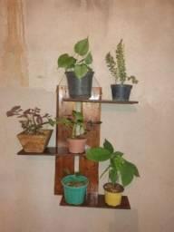 Suporte rústico para plantas