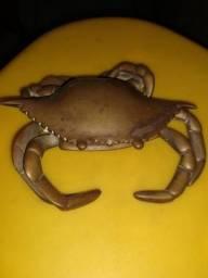 Caranguejo de bronze