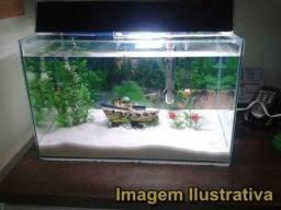 Aquario 100 Litros