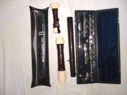 Flautas semi-novas