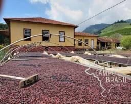 LINDA FAZENDA 487 HECTARES EM CARMO DE MINAS IDEAL PARA PLANTAÇÃO DE CAFÉ