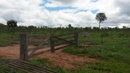 Fazenda a venda em Paranatinga Mato Grosso/MT