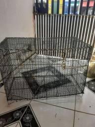 Vendo uma gaiola de ferro  pra papagaios