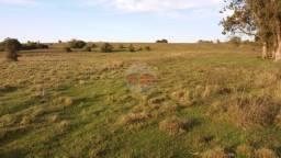 94 hectares de campo, próximo a Santa Maria