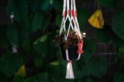 Suporte pequeno de planta colorido