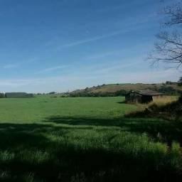 Fazenda em Borrazopolis-Pr