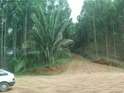 Loja comercial à venda em Zona rural, Santa teresa cod:AR00003