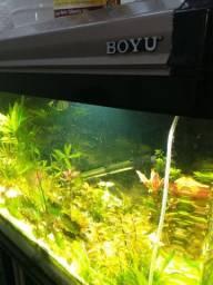 Aquario boyu + móvel boyu