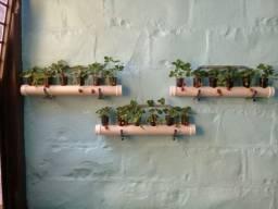 Horta suspensa vertical (viva)