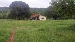 Fazenda 256ha, município de corguinho