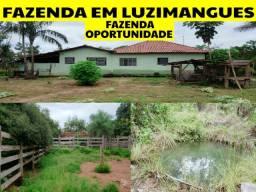 Fazenda de Oportunidade 24 km Posto Luzimangues Tocantins