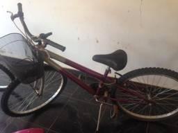 Bicicleta aro 26 18marchas Prata Roxa
