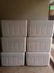 Caixa de isopor 120 litros R$50