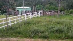 Fazenda 14 alqueires Varjão/Aragoiânia
