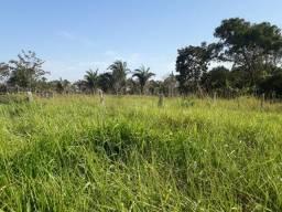 Fazenda para Pecuária em Livramento com 333 hectares