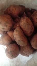 Batata organica