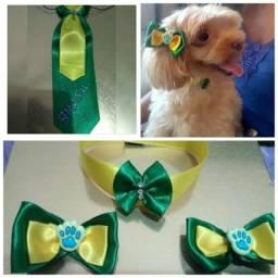 Laços Pet e gravatas Brasil