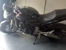 Hornet 600/2010