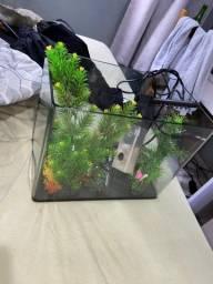 Título do anúncio: vendo aquario oceantech 35 litros