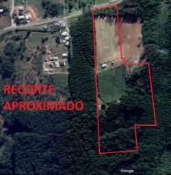Vende-se terreno de 5,7 hectares no interior de Farroupilha, em frente à rodovia