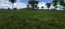 Fazenda / 3.388 ha (700 Alq.) / Estreito / Maranhão
