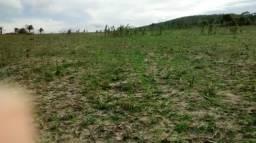 Terreno em sítio traíras, município de girau do Ponciano