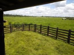 Fazenda 1.800 hectares em Paragominas
