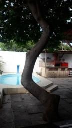 Casa na Coroa do Meio com piscina, churrasqueira, Wi-Fi