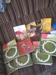 Livros usados da Eleva 6 ano