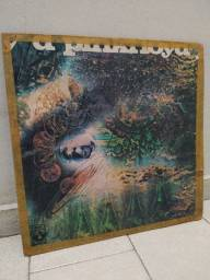 Vinil Pink Floyd - A Saucerful of Secrets