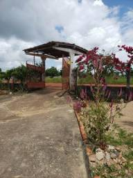 Sítio localizado na Colônia Entre Rios, em Estância - 3 Tarefas - com 3 Casas - Produzindo