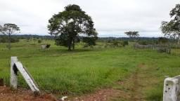 Fazenda á 13km de Ji-Paraná/RO