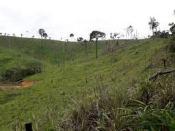 Fazenda em Pacajá 110 Alqueires
