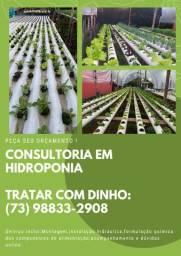 Título do anúncio: Consultoria de hidroponia