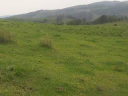 Título do anúncio: Área de terra pra criação de gado