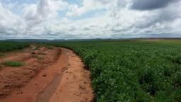 Fazenda em Alto Parnaíba - MA