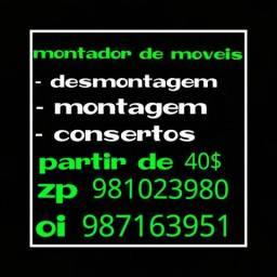 Montador zapp 981023980