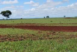 Fazenda Dupla Aptidão.850 hectares. 60 km de Campo Grande