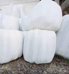 Título do anúncio: Bola pré secado de Azevén 40kg