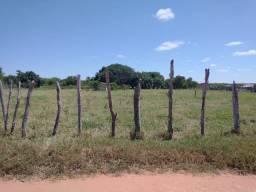 Terreno 10 x 100 (1000m2)