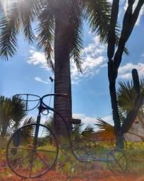 Bicicleta com Revisteiro e Porta Vaso em Madeira e Ferro - Cód 950