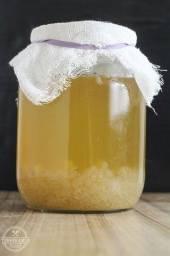 Título do anúncio: Kefir de água - kit com 10gr de grãos