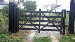 Fazenda 87 hectares em São João do Paraiso
