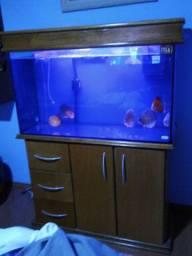 Vendo aquário de 300litros completo.