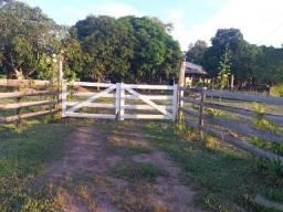 Chácara 2,5 hectares, 9  * só whatsapp