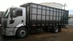 boiadeiro ford cargo 2428 completo   ano 2014